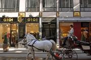 A classic Viennese horse and carriage, a Fiaker, in motion in Vienna