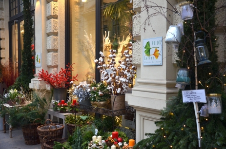An assortment of plants and flowers in front of a flower shop in Vienna