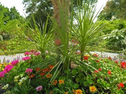 Colorful flowers surround pointed palm bushes in the Green Garden of Vienna