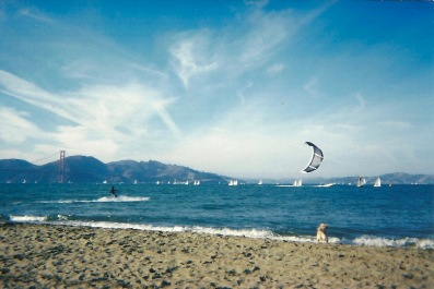 Kiteboarding at Crissy Field in San Francisco Bay